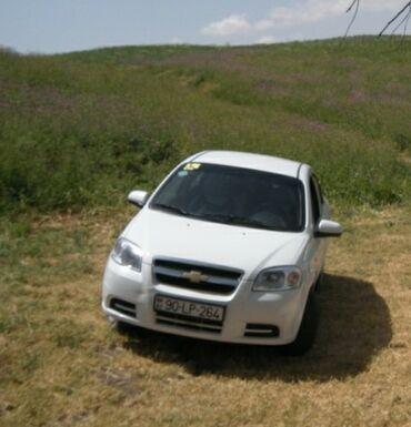 Chevrolet - Azərbaycan: Chevrolet Aveo 1.4 l. 2011 | 286000 km