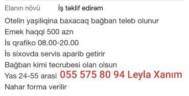 kisilr uecuen torskilli krossovkalar - Azərbaycan: Bağban tələb olunur otelin yaşıllığına baxacağ əmək haqqı 500 azn