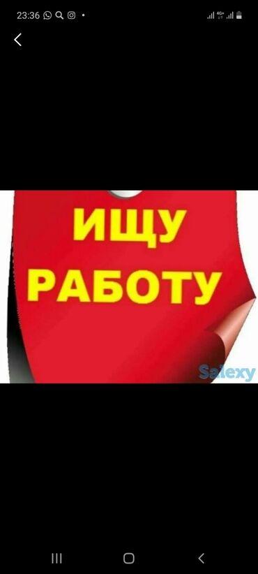 Продавец продуктового магазина - Кыргызстан: Продавец продуктового магазина 2,5 год опыт  Официант 3-4 месяц