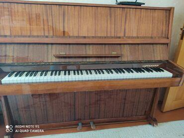 Musiqi alətləri - Azərbaycan: Piano və fortepianolar