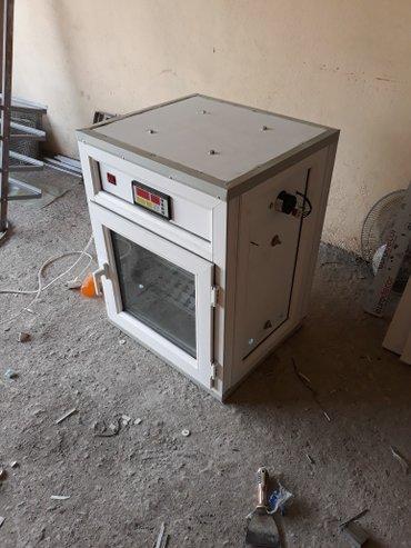 Xırdalan şəhərində (inkubator 176) inkubatorun qiymeti yumurta tutumuna görə dəyişir.