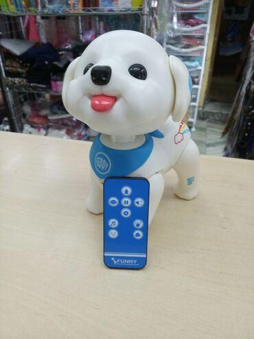 Собака робот, радиоуправляемая, с весёлым характером и хорошим