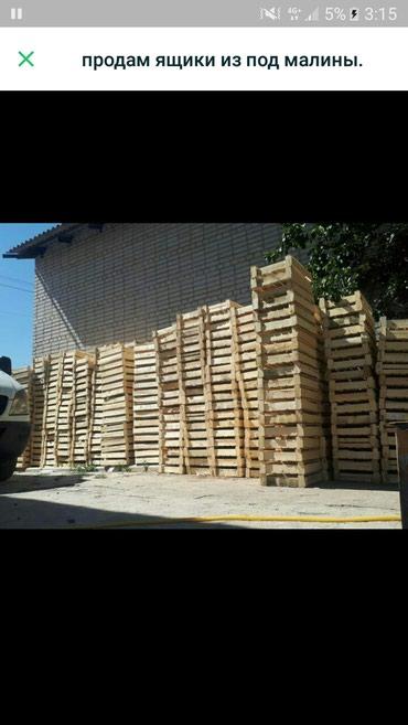 Продаю ящики под малину и клубнику в Бишкек