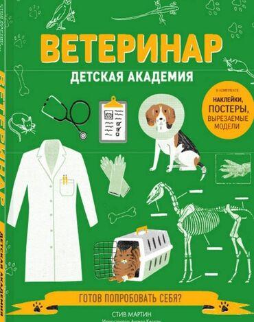 ветеринар бишкек in Кыргызстан | УСЛУГИ ВЕТЕРИНАРА: Ветеринар на выезд Работаем со всеми видами животными