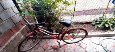 Спорт и хобби - Селекционное: Велосипеды
