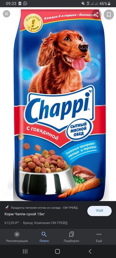 Животные - Новопокровка: Chappi корм