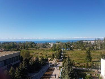 Продаю участок на Иссык Куле в Долинке 80сот под сельхозназначения! в Бишкек