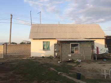 голые в Кыргызстан: Срочно продаю кошару ( откорм базу для быков на 200 голов ) стена жжен
