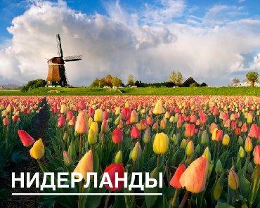 stranica v instagram в Кыргызстан: Нидерланды (Голландия) Юридическая консультация.ВНЖ, ПМЖ, Иммиграция