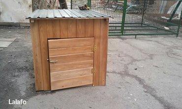 Деревянные будки и вольеры для ваших любимых питомцев! Цена зависит от в Бишкек - фото 4