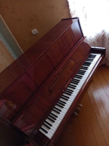 10 elan   İDMAN VƏ HOBBI: SHEMKİR RAYONU. Piano Belarus. Tam ideal islek veziyyetdedi