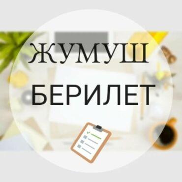 Бытовая техника дешево - Кыргызстан: Менеджер по продажам. Без опыта