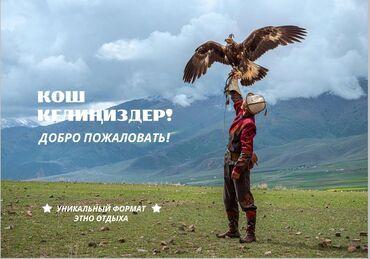 корова бишкек в Кыргызстан: Пригшаем на работу.Нужны администратор,воспитатель,вожатый в этно