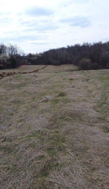 Nekretnine - Srbija: Sale of land plots ares Vlasnik