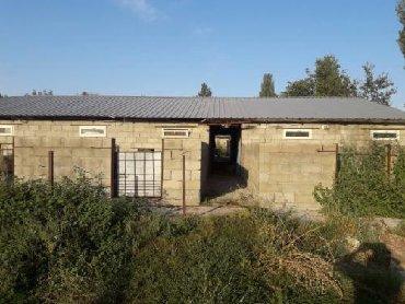 ферму металлическую 7м в Кыргызстан: Продаю ферму+3к дом 50 сот р/н Сокулук. 3 фазы, все усл  Продаю ферму