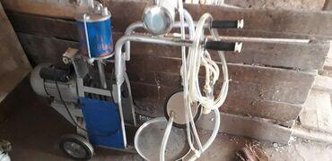 купить айфон х бу in Кыргызстан   APPLE IPHONE: Товары и оборудование для с/х животных