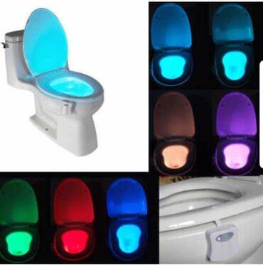 Aktivni ves - Pozarevac: SUPER CENA 1400dinTOILIGHT - Lampa za WC šolju(baterije uračunate u