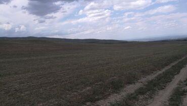 киргизия продажа авто in Кыргызстан | АКСЕССУАРЫ ДЛЯ АВТО: Для сельского хозяйства, Срочная продажа