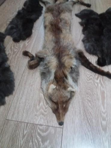 Okovratnik od lisice i krzno zeca...izuzetno mekani...cena je za sve - Pozarevac