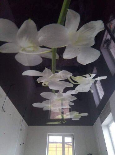 Уважаемые клиенты! натяжные потолки качественно и быстро без запаха и