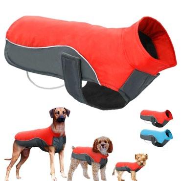 Odelce za psa - Srbija: Nova kabanica - jakna za psa veličina xxl. Pogledajte dimenzije na