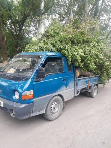 Уголь и дрова - Кыргызстан: Отун