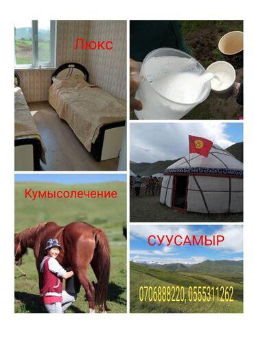 Отдых на Иссык-Куле в Кыргызстан: Кумысолечение на жайлоо. Суусамыр, урочище Арамза. Комфортабельные 2-х