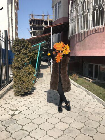 Бака жалбырактын пайдасы - Кыргызстан: