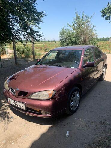Транспорт - Нижний Норус: Nissan Primera 1.8 л. 2001