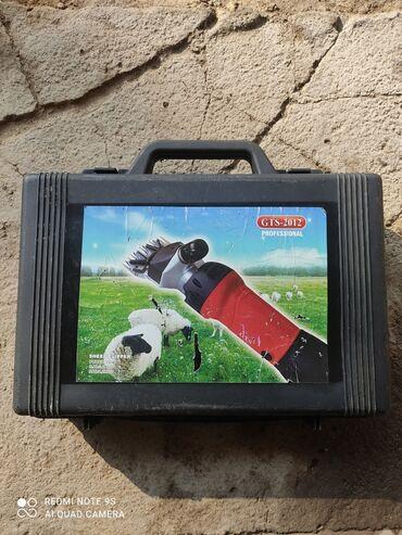 professional mikrofon в Кыргызстан: Машинка для стрижки овец GTS  Professional