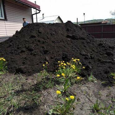 Всё для дома и сада - Кыргызстан: Чернозем, чернозем, чернозем Чернозем для газона. Почва для