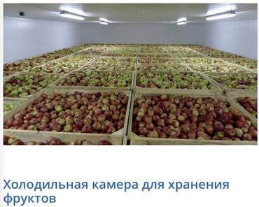 Срочно Продаю холодильник 300 тонн! в Бишкек