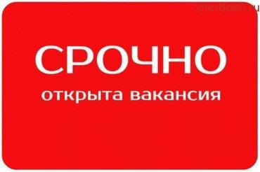 Требуется реализатор, желательно с в Бишкек