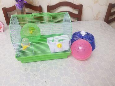 Животные - Орто-Сай: Домик для хомяка