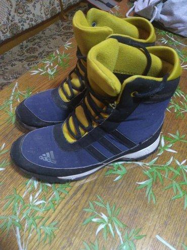 Adidas cipele - Srbija: Adidas duboke cipele 38