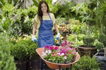 Требуется хороший садовник с опытом работы на постоянную работу.можно в Бишкек