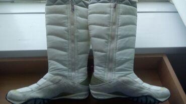 Ženska patike i atletske cipele | Subotica: Original puma nove 37