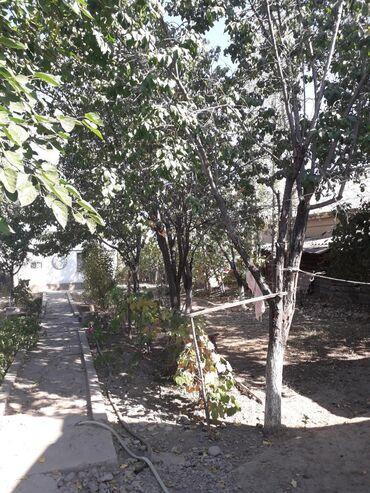 прод дом в Кыргызстан: Продам Дом 100 кв. м, 3 комнаты