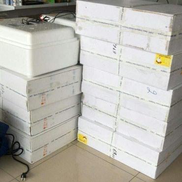 Xudat şəhərində Inkubator satis merkezi. zavodan bir basa