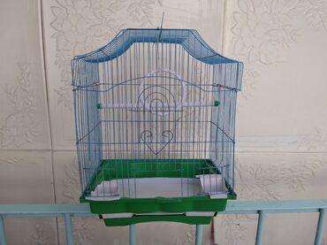 Клетка для птиц всё в наличии: кормушка, поильник, кольцо,палка