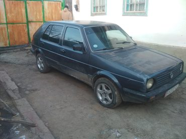 Volkswagen Golf 1988 в Ананьево