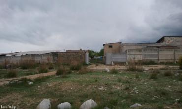 futbolka ben 10 в Кыргызстан: Продам Дом 250 кв. м, 10 комнат