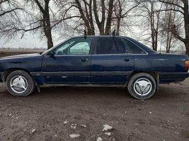 Audi 100 1989 в Беловодское