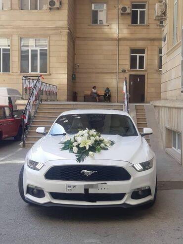 ford mustang 1967 satilir in Azərbaycan   FORD: Kirayə verirəm: Minik   Ford