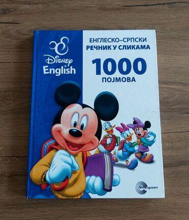Diseny English(2 knjige) i mali rečnik Engleskog jezika u slikama. Za