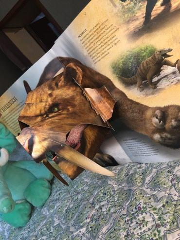 Интереснейшая книга о ЛЕДНИКОМ ПЕРИОДЕ  Хочешь посмотреть на мамонта? в Бишкек - фото 3