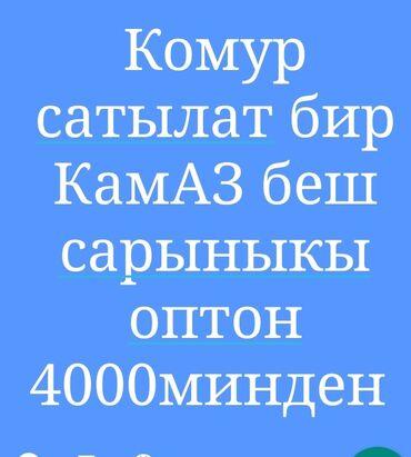 transport v gory в Кыргызстан: Другой транспорт