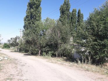 Токмок шаарындагы Калиновка айылынан 8-9 сотик жер сатылат .Уйдун