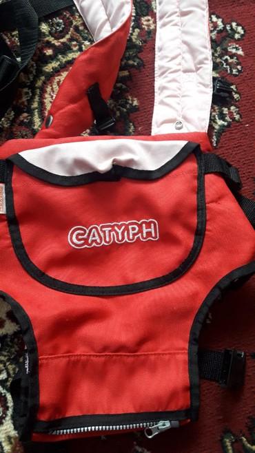 рюкзак кенгуру babybjorn в Кыргызстан: Кенгуру