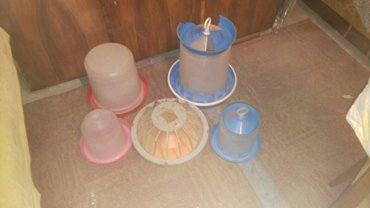 Hranilice i pojilice za pernad - Senta